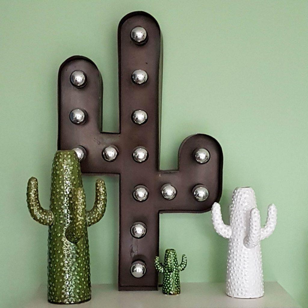 Cactussen Interieur Oegstgeest